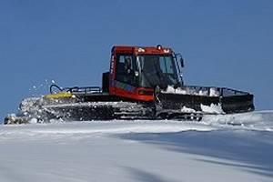 Snowsaurus