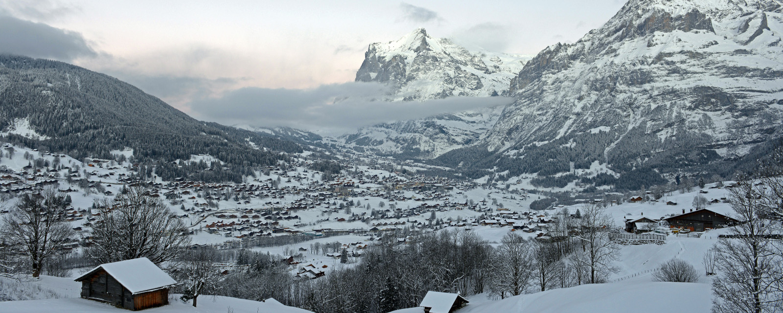 Resorts Guide Grindelwald SnowKings